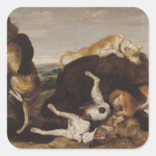 Caza del oso o, batalla entre los perros y osos calcomanías cuadradass personalizadas