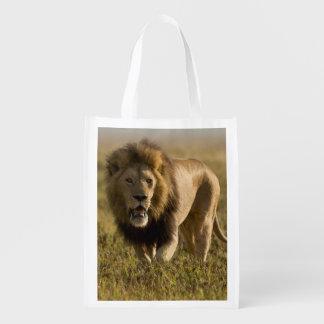 Caza masculina del león bolsa para la compra
