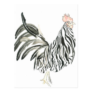 Cebra del gallo del safari postal