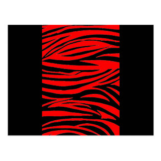 Cebra roja en negro y rojo tarjeta postal