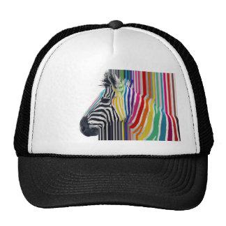 cebra vibrante colorida de moda impresionante de gorro