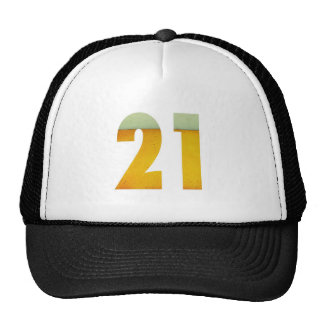 Celebre el 21ro cumpleaños gorros bordados