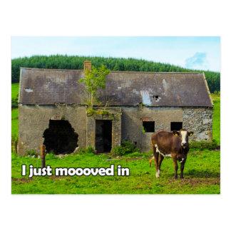 Celtic Irlanda que acabo de moooved en postal de