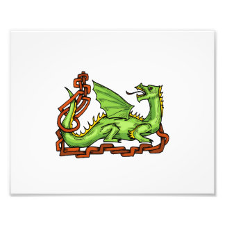 Celtic style dragon and rope.png photo art