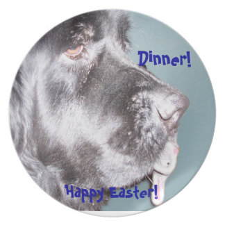 Cena de Pascua del perro de Terranova Plato