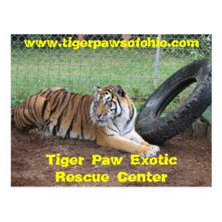 Centro exótico del rescate de la pata del tigre postal