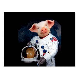 Cerdo del astronauta - astronauta del espacio postal