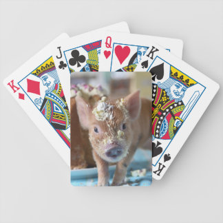 Cerdo divertido y la torta baraja cartas de poker