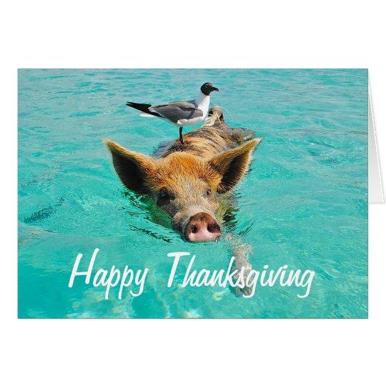 Cerdo feliz de la natación de la acción de gracias tarjeta de felicitación