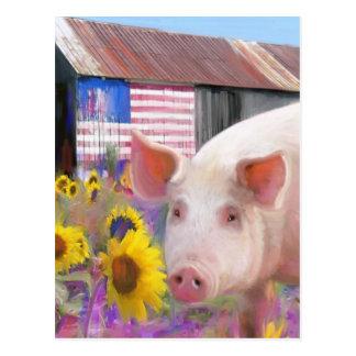 Cerdo feliz de Marin del oeste Postal