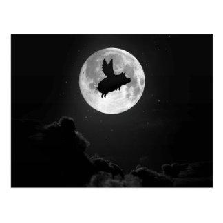 cerdo nocturno del vuelo postal