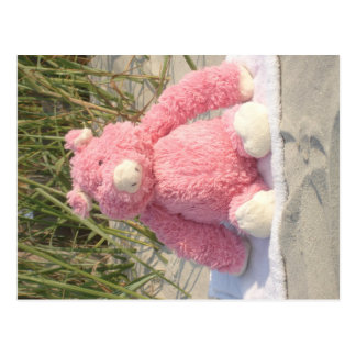 Cerdo rosado en la playa postal