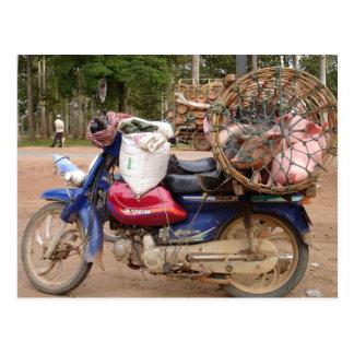 Cerdos en moto-Camboya Postal