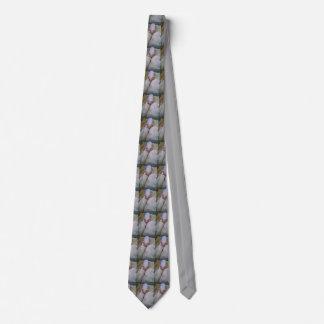 Cerdos infinitos corbatas personalizadas
