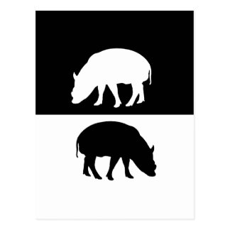 cerdos postal