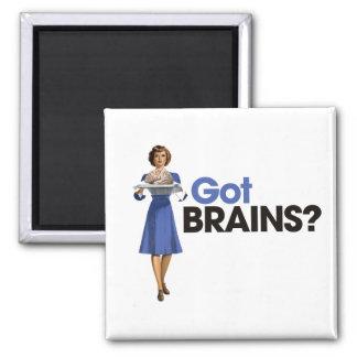 Cerebros conseguidos imanes