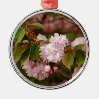 Cereza floreciente de Kwanzan del japonés de la pr Adorno De Navidad