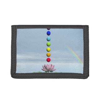 Chakras y arco iris - 3D rinden