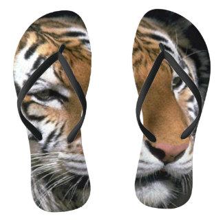 Chanclas Amante del tigre rayado