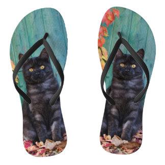 Chanclas Gatito lindo del gato negro con la foto azul de la