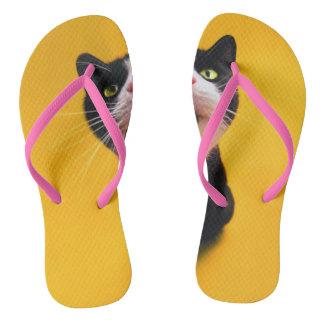 Chanclas Gato blanco y negro del gatito-mascota del