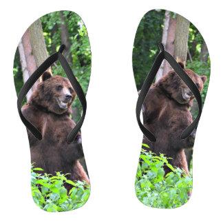 Chanclas Oso grizzly que se coloca alto en las maderas