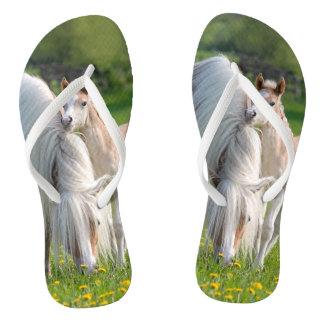 Chanclas Potro lindo del bebé de los caballos de Haflinger