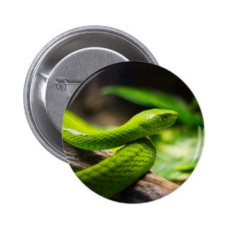 Chapa con serpiente, Snake pin Botones