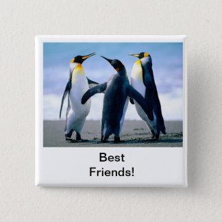 Chapa Cuadrada pingüino