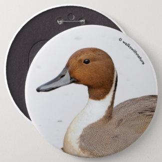 Chapa Redonda De 15 Cm Reflexiones de un pato del pato rojizo