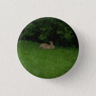 Chapa Redonda De 2,5 Cm Conejo salvaje - insignia