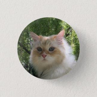Chapa Redonda De 2,5 Cm Gato siberiano del bosque