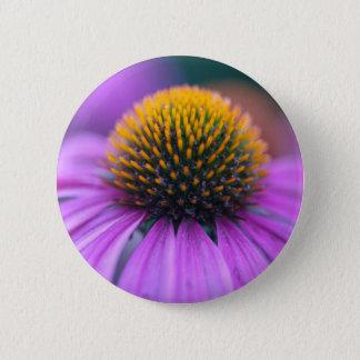 Chapa Redonda De 5 Cm Coneflower púrpura (purpurea del Echinacea)