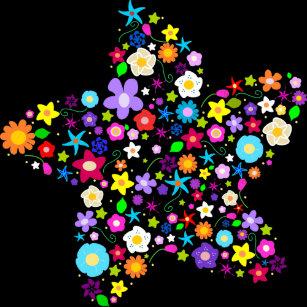Regalos Estrellas Bonitas Zazzlees