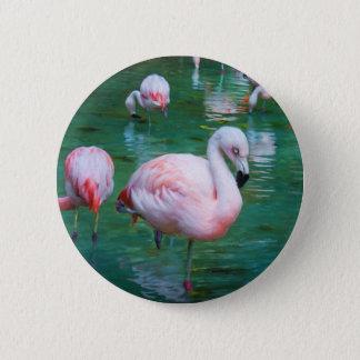 Chapa Redonda De 5 Cm Flamencos rosados