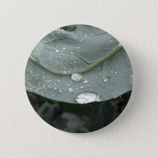 Chapa Redonda De 5 Cm Gotas de agua en las hojas de la coliflor