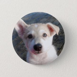 Chapa Redonda De 5 Cm Insignia del perrito