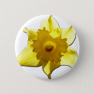 Chapa Redonda De 5 Cm Narciso 1,0 de la trompeta amarilla