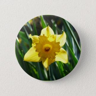 Chapa Redonda De 5 Cm Narciso amarillo 03.0.g