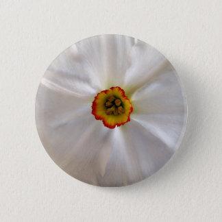 Chapa Redonda De 5 Cm narciso del blanco de la perla