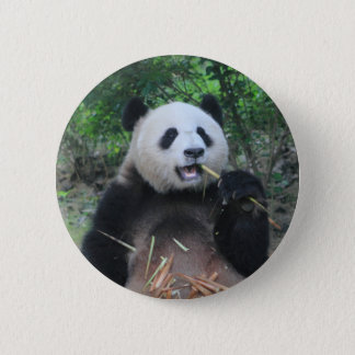 Chapa Redonda De 5 Cm Panda gigante de la foto