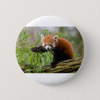 Chapa Redonda De 5 Cm Panda roja que come la hoja verde