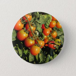 Chapa Redonda De 5 Cm Plantas de tomate que crecen en el jardín