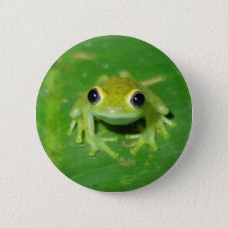 Chapa Redonda De 5 Cm Rana verde
