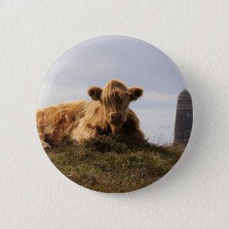 Chapa Redonda De 5 Cm Vaca de Luing en la isla de Islay, Escocia