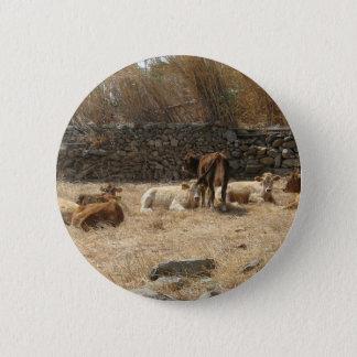 Chapa Redonda De 5 Cm Vacas