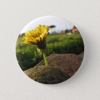 Chapa Redonda De 5 Cm Wildflower amarillo que crece en piedras en la