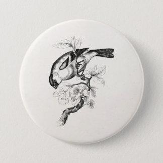Chapa Redonda De 7 Cm Ilustracion del pájaro del Bullfinch de los 1800s