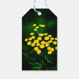 Chaqueta verde con los botones de oro etiquetas para regalos