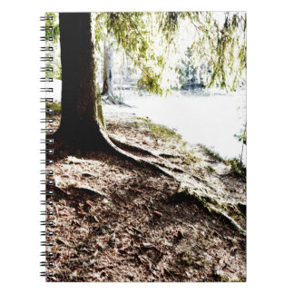 Charca del bosque cuaderno